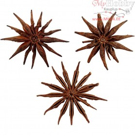 Seeds of anise Star, D: 15-20 mm, 250g