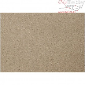 Recycled Paper, A4 210x297 mm,  100 g, recycled, 250sheets