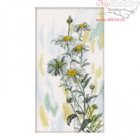 RTO Tender daisies - Counted Cross Stitch Kit, Art: M261