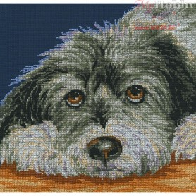 RTO Dog melancholy - Counted Cross Stitch Kit, Art: M413