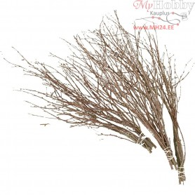 Birch Branches, L: 50-60 cm, 20pcs