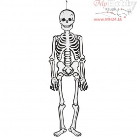 Skeleton, H: 120 cm,  300 g, 1pc