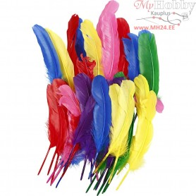 Feathers, L: 20 cm, asstd colours, 36mixed