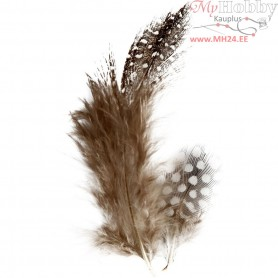 Guinea fowl feathers, approx. 100 pc, brown, nature, 3g