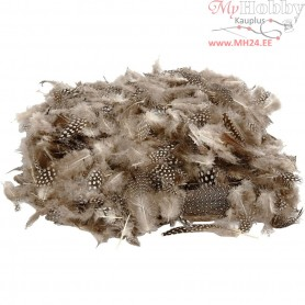 Guinea fowl feathers, natural, 50g