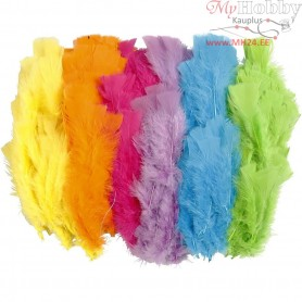 Feathers, L: 11-17 cm, asstd. colours, bright colours, 144bundles