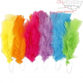 Feathers, L: 11-17 cm, asstd. colours, bright colours, 18bundles