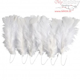 Feathers, L: 11-17 cm, white, 18bundles