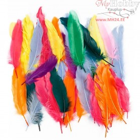Feathers, L: 12-15 cm, asstd colours, duck, 350mixed