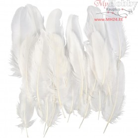 Feathers, approx. 15 cm, white, 350pcs