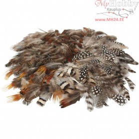 Natural Feathers, 6x24pcs