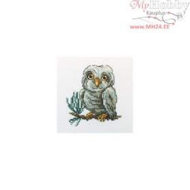 RTO Owlet - Counted Cross Stitch Kit, Art: H223