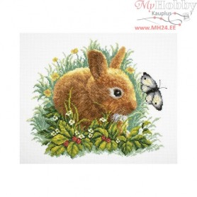 RTO Rabbit and butterfly - Counted Cross Stitch Kit, Art: M323