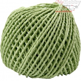 Paper Yarn, thickness 2,5-3 mm, approx. 42 m, light green, 150g