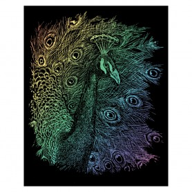 Peacock Engraving Art Kit Standard - Royal Brush - Rainbow Foil 20.3x25.4cm (RAIN14)