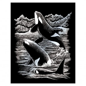 Orca Whales Engraving Art Kit Standard - Royal Brush - Silver Foil 20.3x25.4cm (SILF19)
