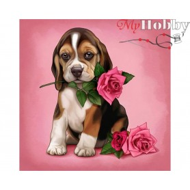 Diamond Embroidery Painting Kit Pure rose, Article: DE6044 Collection D'Art - size 38x38 cm.