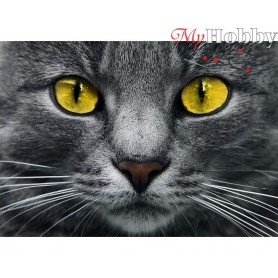 Diamond Embroidery Painting Kit Yellow eyes, Article: DE6040 Collection D'Art - size 27x19 cm.