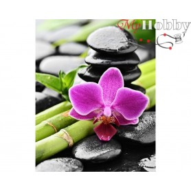Diamond Embroidery Painting Kit Orchid and bamboo, Article: DE4659 Collection D'Art - size 48x38 cm.