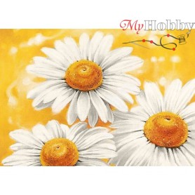 Diamond Embroidery Painting Kit Summer camomiles, Article: DE4646 Collection D'Art - size 27x19 cm.