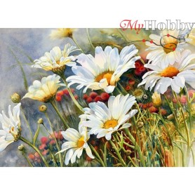 Diamond Embroidery Painting Kit Field  camomiles, Article: DE4644 Collection D'Art - size 27x38 cm.