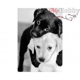 Diamond Embroidery Painting Kit Black and white puppies, Article: DE453 Collection D'Art - size 27x19 cm.