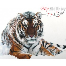 Teemanditikand (mosaiik) - Tiger on the snow - 48x38 cm. Collection D'Art -  DE451