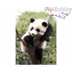 Diamond Embroidery Painting Kit Tired panda, Article: DE431 Collection D'Art - size 27x38 cm.