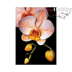 Diamond Embroidery Painting Kit Graceful orchid, Article: DE281 Collection D'Art - size 27x38 cm.