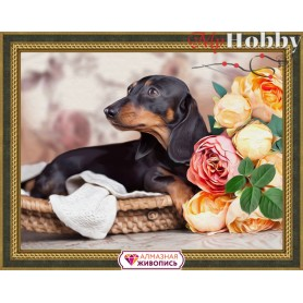 Diamond Painting Full Kits 40х30cm  Mosfa - AM1457