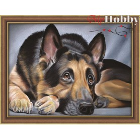 Diamond Painting Full Kits 40x30cm  Mosfa - AM1418