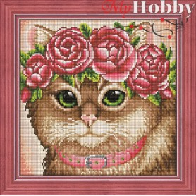 Diamond Painting Full Kits 30x30cm  Mosfa - AM1659