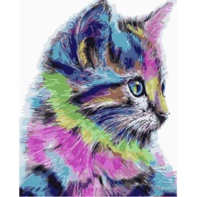 Paint by numbers ' Colourful Kitten' Size 40x50cm DIY art. by Tsvetnoy - MG2077e