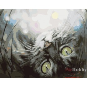 Paint by numbers ' Dreaming Kitten' Size 30x40cm DIY art. by Tsvetnoy - ME1074e