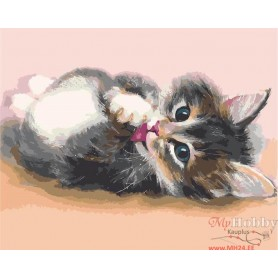 Paint by numbers ' Cute kitten' Size 40x50cm DIY art. by Tsvetnoy - MG2076e