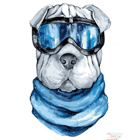 Paint by numbers ' Shar-Pei' Size 30x40cm DIY art. by Tsvetnoy - ME1110e