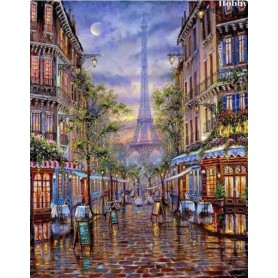 Diamond embroidery and mosaic paintings ' Paris' Size 40x50cm DIY art. by Tsvetnoy - LG062e