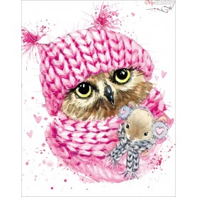 Diamond embroidery and mosaic paintings ' Winter Owl' Size 40x50cm DIY art. by Tsvetnoy - LG208e