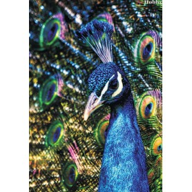 Diamond embroidery and mosaic paintings ' Peacock' Size 40x50cm DIY art. by Tsvetnoy - LG187e
