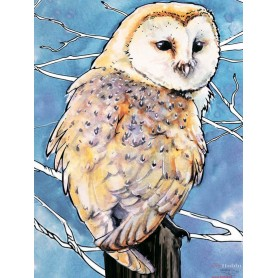 Diamond embroidery and mosaic paintings 'Barn Owl ' Size 30x40cm DIY art. by Tsvetnoy - LE120e