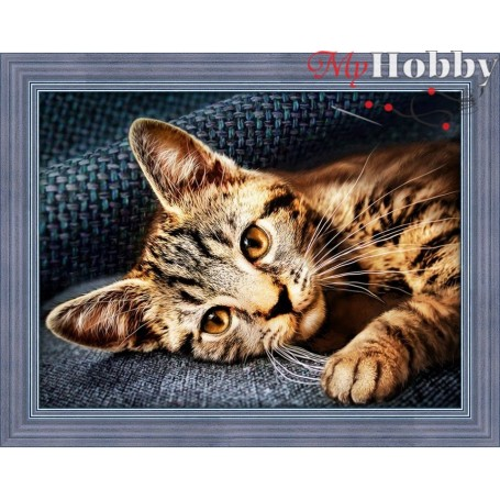 "Diamond Painting Full Kits ""OLIVER"", 40x30cm  Mosfa - AM1700"