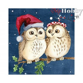 Diamond Embroidery Painting Kit Owls on a date, Article: DE7105 Collection D'Art - size 38x38 cm.