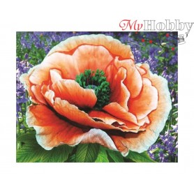 "Diamond Embroidery Painting Kit ""Bright poppy"" Collection D'Art - size 21x17"