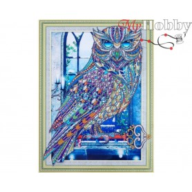 "Diamond Embroidery Painting Kit ""Crystal owl"" Collection D'Art - size 30x40"
