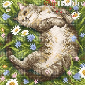 Diamond Embroidery Painting Kit Camomile summer Collection D'Art - size 20x20