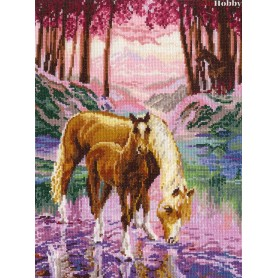 Complete Counted Cross Stitch Kit 'Wonderful Vision' 26 x 35cm - MAGIC NEEDLE art: 60-01