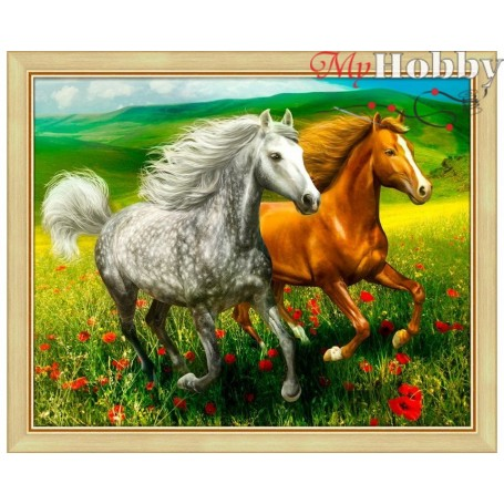 """Diamond Embroidery Painting Kit'Horses in the meadow"""", Article: AM1766, size: 50x40 - Mosfa"""